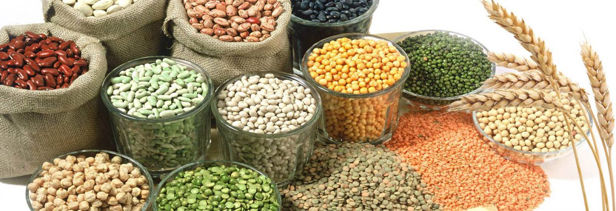 Different Types of Pulses/Lentils