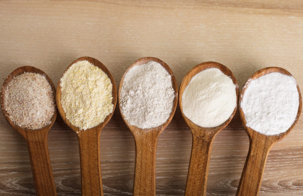 Parts of Wheat Kernel & Types of Flour