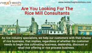 How to select excellent Rice Machine and Layout Planning