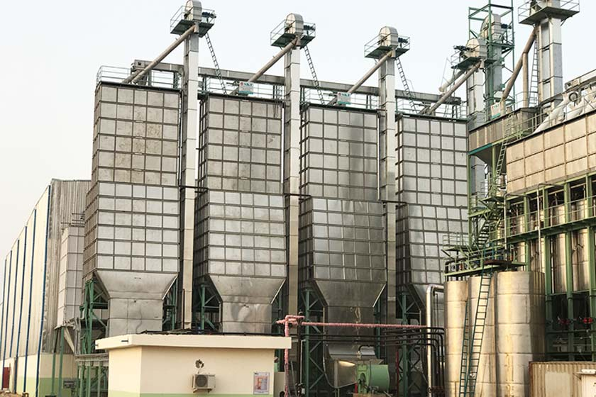 Upgrade Your Existing Rice Mill Plant With The Nextech Solutions in India