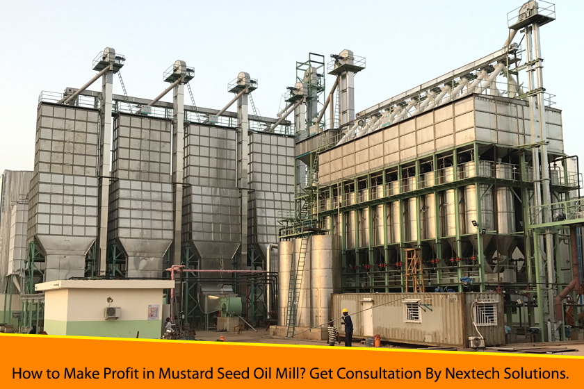 How to Make Profit in Mustard Seed Oil Mill? Get Consultation By Nextech Solutions.