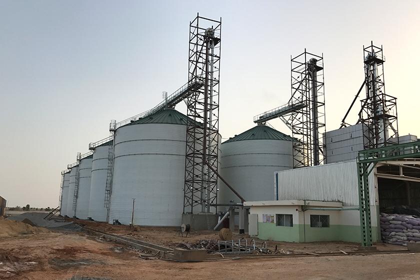 Advantages of Silos For Grain Storage
