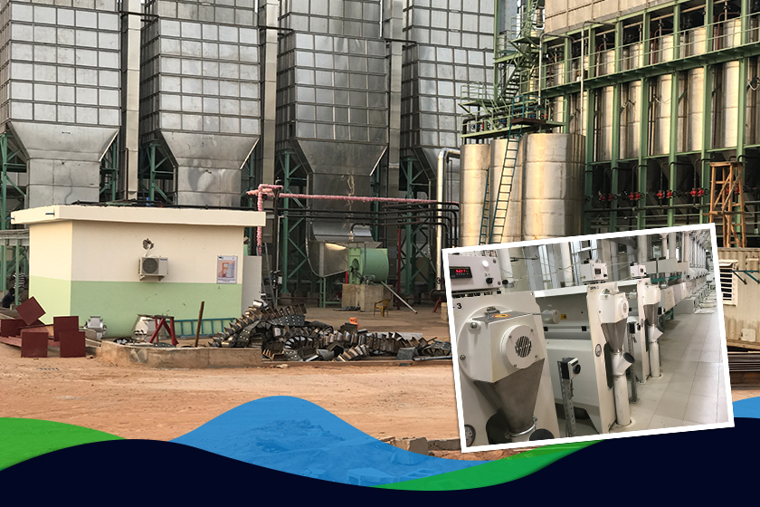 Process of Setting Up a Rice Mill
